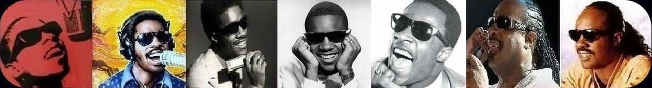 Stevie Wonder Web
